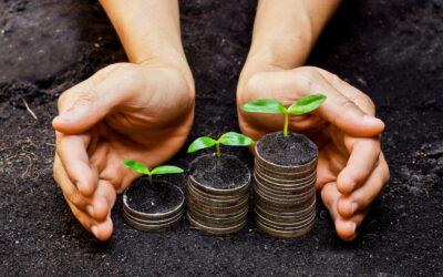 Vad är din roll i en direktförsäljnings- organisation?